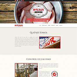 Desarrollo del portal corporativo multiidioma, más catalogo de productos para Intexur