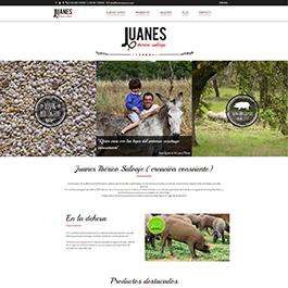 Desarrolllo de portal corporatiovo más blog integrado para Juanes Ibéricos Salvajes