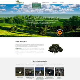 Propuesta de diseño para web corporativa Campovalle